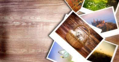 Photos & Pictures | Obrazky a fotky zadarmo | Blog.kupsima.sk