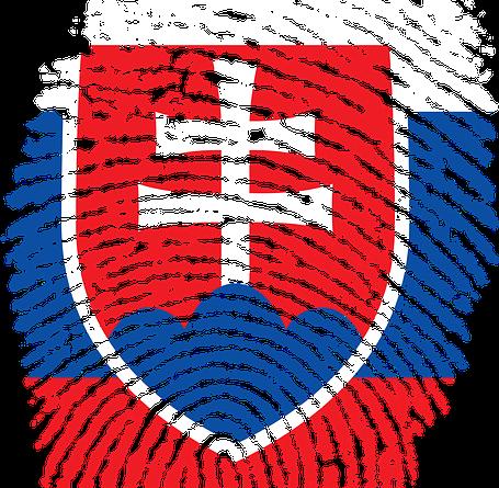 Lepsie Slovensko ? Modernejsi stat